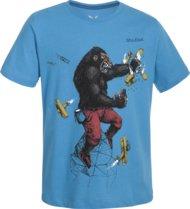 Bekleidung > Bekleidungstyp > T-Shirts >  Salewa King Kong Klettershirt Kinder